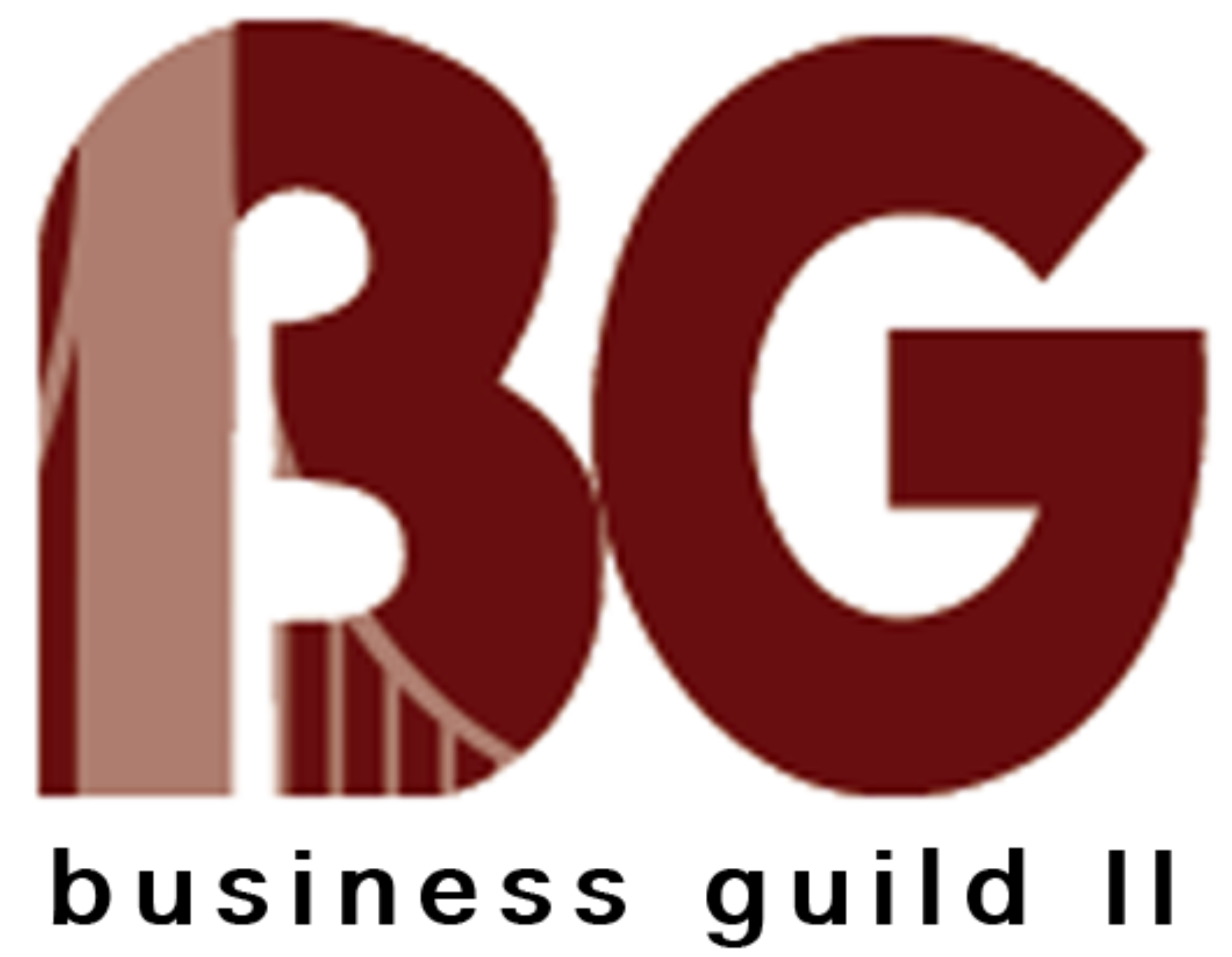 Business Guild 2